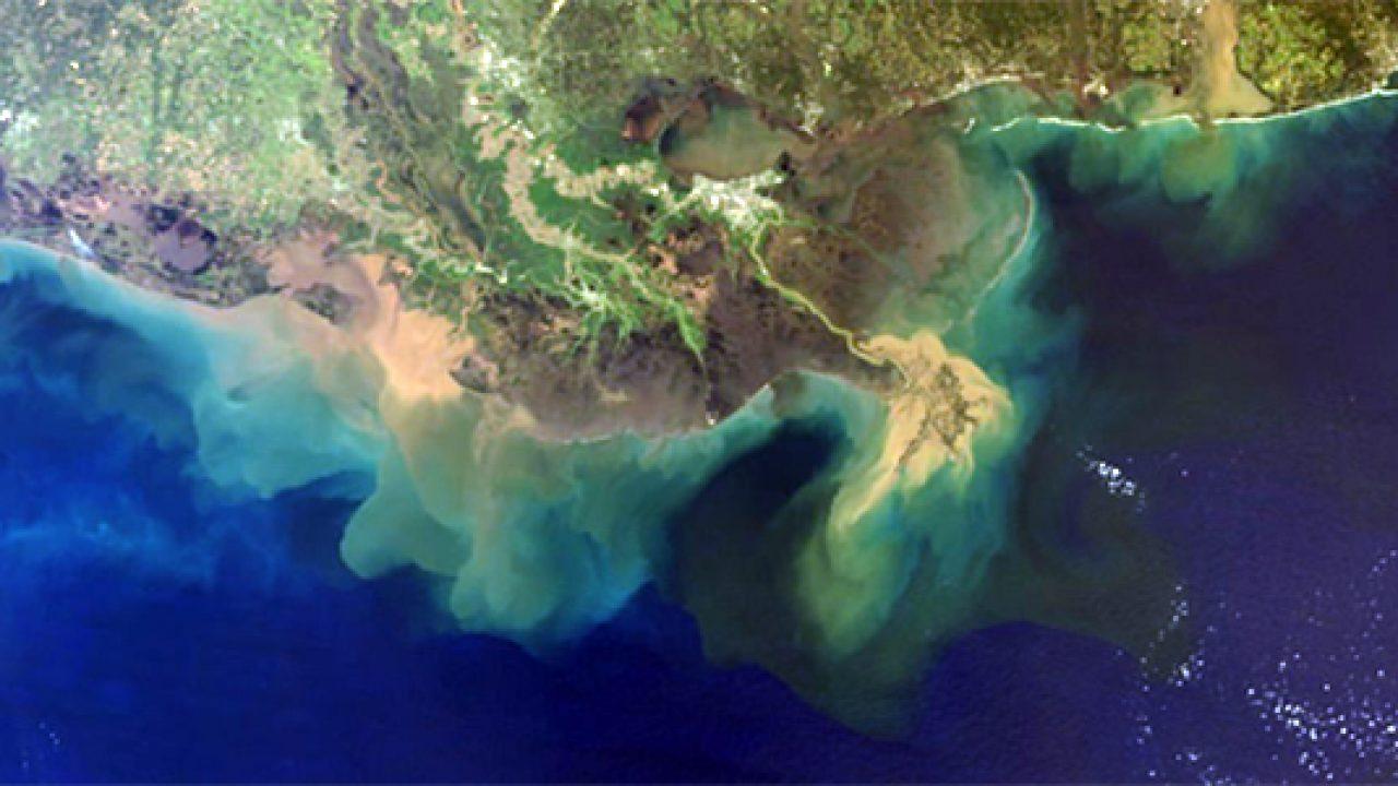 Gulf Coast Mississippi Sea Grant