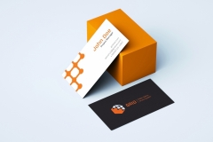 Gibeom Lee: Grid Business Card