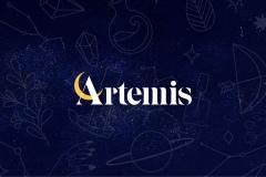 Artemis Identity by Kathleen Kurzban