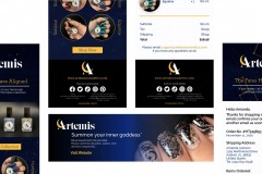 Artemis Emails and Web Banner by Kathleen Kurzban