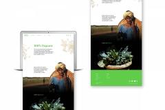 f20_SeShow_OrganicTreasure_ShreyankShivaprasad_01